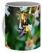 Bumblebee On Abelia Coffee Mug