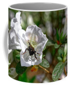 Bumblebee On White Azalea Coffee Mug
