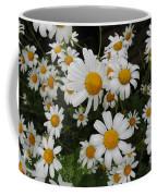 Bunch Of Daisy Coffee Mug