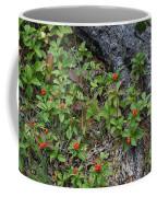 Bunchberry Berries Coffee Mug