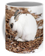 Bunnies Three Coffee Mug