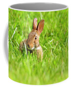 Bunny In Field  Coffee Mug