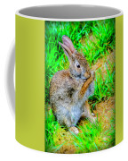 Bunny Secrets Coffee Mug