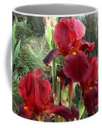 Burgundy Iris Flowers Coffee Mug
