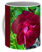 Burgundy Red Rose At Pilgrim Place In Claremont-california  Coffee Mug