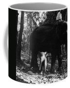 Burma: Elephants, 1960 Coffee Mug