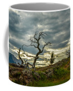 Burmis Tree And Wind Swept Pines Coffee Mug