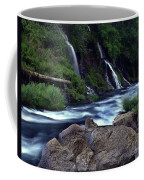 Burney Falls Creek Coffee Mug