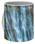 Burney Falls Detail Coffee Mug