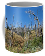Burnt White Firs Coffee Mug