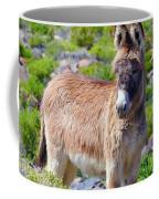 Burro Babe Coffee Mug