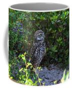 Burrowing Owls At Guard Coffee Mug