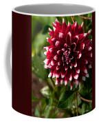 Burst Of Red Coffee Mug