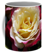Burst Of Rose Coffee Mug