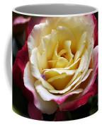 Burst Of Rose Coffee Mug