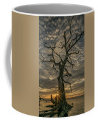 Bursting Forth Coffee Mug