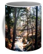Bushkill Falls Coffee Mug