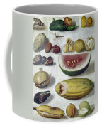 Bustos: Still Life, 1874 Coffee Mug