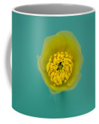 Buttercup, Ranunculus Coffee Mug