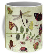 Butterflies, Insects And Flowers Coffee Mug