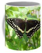 Butterflies Live - 8 Coffee Mug