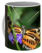 Butterfly 2 Eucides Isabella Coffee Mug