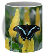 Butterfly Blue Striped Coffee Mug
