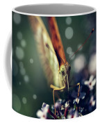 Butterfly Close Up Coffee Mug
