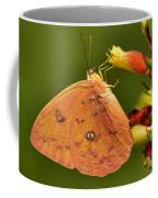 Butterfly Delight Coffee Mug