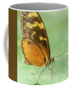 Butterfly Eueides Isabella Coffee Mug