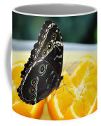 Butterfly Haven Citrus Coffee Mug