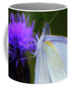 Butterfly In White Coffee Mug