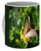 Butterfly Land Coffee Mug