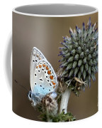 butterfly on a Echinops adenocaulon Coffee Mug