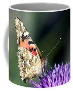 butterfly on a Silybum marianum I Coffee Mug