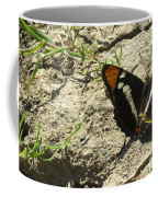 Butterfly On Cracked Ground Coffee Mug