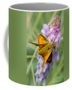 Butterfly On Flower Coffee Mug