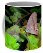 Butterfly On Geranium Leaf Coffee Mug