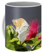 Butterfly On Magenta Flower Coffee Mug