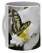 Butterfly On Orchid Coffee Mug