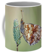 Butterfly On The Grass Coffee Mug