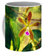 Butterfly Orchid - Encyclia Tampensis Coffee Mug
