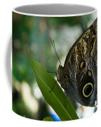 Butterfly Sitting Coffee Mug