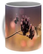 Butterfly Spirit #03 Coffee Mug by Loriental Photography
