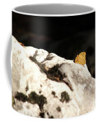 Butterfly Standing On Rock Coffee Mug