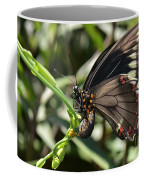 Butterfly Surprises Coffee Mug
