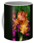 Butterscotch And Pink Coffee Mug