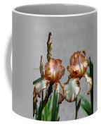 Butterscotch Ripple Coffee Mug