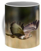 Buzzard In Flight Coffee Mug