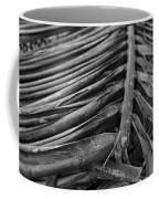 Bw Fallen Frond Coffee Mug